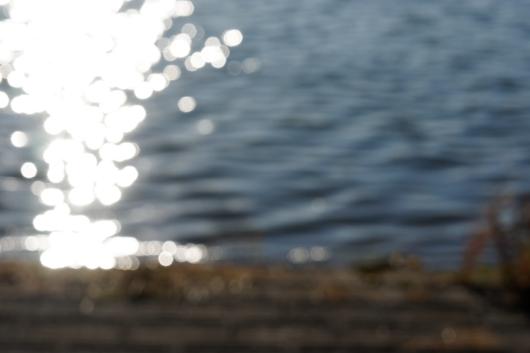 彩湖きらきら
