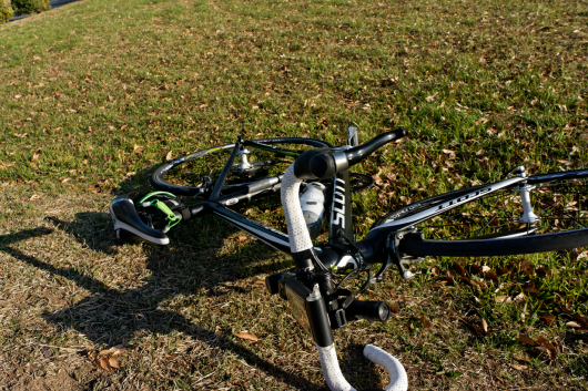彩湖自転車もゴロンと