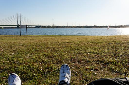 彩湖芝生で横に