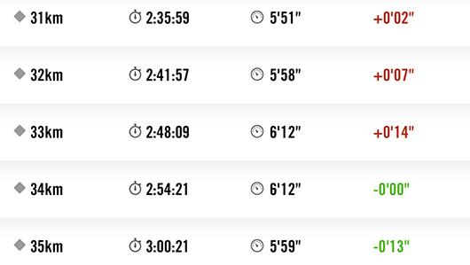 館山マラソン31kmから35kmラップ