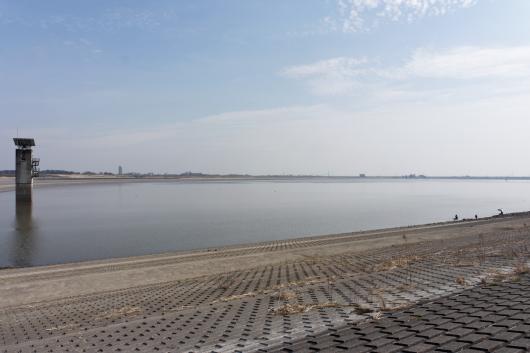 広大な渡良瀬遊水地