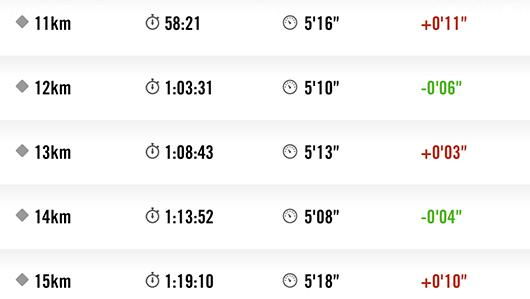 板橋シティマラソン2014-11km15km-rap
