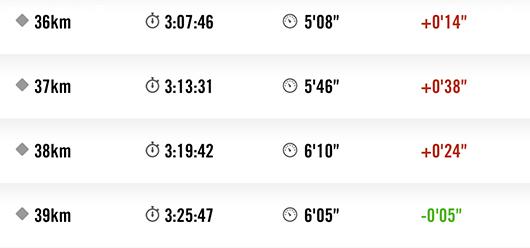 板橋シティマラソン2014-36km39km-rap