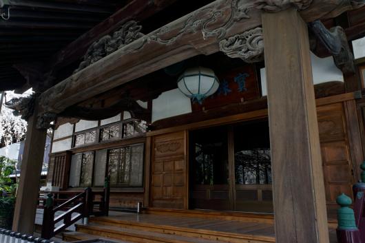 玉蔵院しだれ桜2014-05