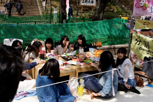 上野公園花見女子大生