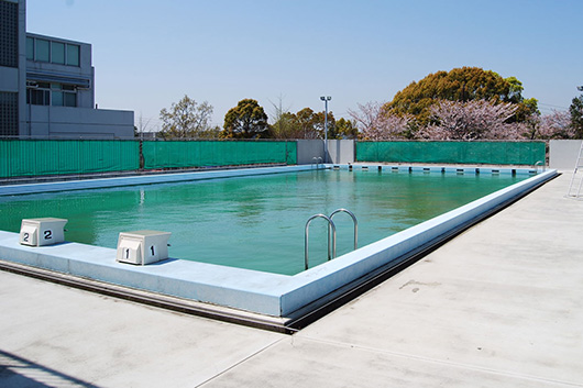 Swim201405